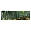 iCanvas Panoramic Stepped Walkway Passing Through a Bamboo Forest, Honshu, Japan Photographic Print on Canvas