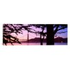 iCanvas Panoramic Suspension Bridge Over Water, Golden Gate Bridge, San Francisco, California Photographic Print on Wrapped Canvas