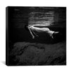 """iCanvas """"Woman in Water"""" Canvas Wall Art by Toni Frissell"""