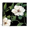"""iCanvas """"Sweet Magnolias I"""" by Color Bakery Painting Print on Wrapped Canvas"""