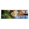 iCanvas Panoramic Trees Along a River, River Dart, Bickleigh, Mid Devon, Devon, England Photographic Print on Canvas