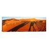 iCanvas Panoramic Shadows of Camel Riders, Sahara Desert, Morocco Photographic Print on Canvas
