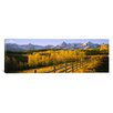 iCanvas Panoramic Trees in a Field Near a Wooden Fence, Dallas Divide, San Juan Mountains, Colorado Photographic Print on Canvas