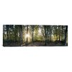 iCanvas Panoramic Trees in a Forest, Black Forest, Freiburg im Breisgau, Baden-Wurttemberg, Germany Photographic Print on Canvas
