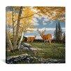 "iCanvas ""Woodland Meadows"" Canvas Wall Art by John Van Straalen"