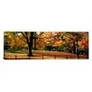 iCanvas Panoramic Trees in a Forest, Central Park, Manhattan, New York City, New York Photographic Print on Canvas