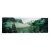 iCanvas Panoramic Trees in a Forest, Yosemite National Park, Mariposa County, California Photographic Print on Canvas