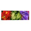 iCanvas Panoramic Tulip and Iris Flowers Photographic Print on Wrapped Canvas