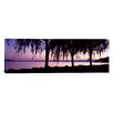iCanvas Panoramic Weeping Willows, Lake Geneva, St. Saphorin, Switzerland Photographic Print on Wrapped Canvas