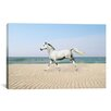 iCanvas 'White Horse on the Beach' by Bob Langrish Photographic Print on Canvas