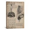 iCanvas 'Sketchbook Studies of Human Organs' by Leonardo da Vinci Painting Print on Canvas