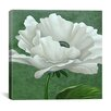 "iCanvas ""White Poppy"" by John Zaccheo Painting Print on Wrapped Canvas"