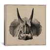 iCanvas Animal Art Triceratops Skull Anatomy Graphic Art on Wrapped Canvas