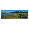 iCanvas Panoramic Two Horses in a Field, Arizona Photographic Print on Canvas