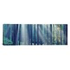 iCanvas Panoramic Sunlight passing through Panoramic Trees in the forest, South Bohemia, Czech Republic Photographic Print on Wrapped Canvas