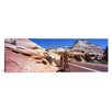 iCanvas Panoramic Two People Cycling on the Road, Zion National Park, Utah Photographic Print on Wrapped Canvas