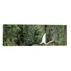 iCanvas Panoramic Waterfall in a Forest, Columbia River Gorge, Oregon Photographic Print on Wrapped Canvas