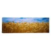 iCanvas Panoramic Wheat Crop Growing in a Field, Palouse Country, Washington State Photographic Print on Canvas