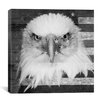 iCanvas Bald American Eagle Graphic Art on Wrapped Canvas in Black