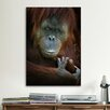 iCanvas Emotion from SD Smart Photographic Print on Canvas