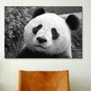 iCanvas Giant Panda Photographic Print on Canvas