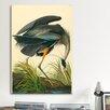 iCanvas 'Great Heron' by John James Audubon Painting Print on Canvas