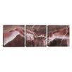 iCanvas Michelangelo The Creation of Adam VI Di Lodovico Buonarroti Simoni 3 Piece on Wrapped Canvas Set
