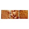 iCanvas Leonardo da Vinci Female Head 3 Piece on Wrapped Canvas Set
