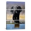 iCanvas Decorative Art Elephant Egret and Carmines Pip McGarry 3 Piece on Wrapped Canvas Set