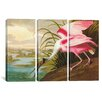 iCanvas John James Audubon Roseate Spoonbill 3 Piece on Wrapped Canvas Set