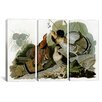 iCanvas Ruffed Grouse by John James Audubon 3 Piece Painting Print on Wrapped Canvas Set