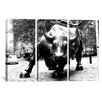 iCanvas Political Wall Street Bull 3 Piece on Wrapped Canvas Set in Black and White