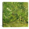 """iCanvas """"Two White Butterflies"""" by Vincent Van Gogh Painting Print on Wrapped Canvas"""