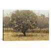 iCanvas 'Golden Trees I' by James Wiens Painting Print on Canvas