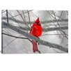 iCanvas Cardinal Bird Photographic Print on Wrapped Canvas