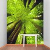 The Binary Box Tall Trees Self Adhesive Wallpaper