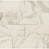 """Bedrosians Marmi Di Napoli 12"""" x 24"""" Porcelain Field Tile in Calacatta"""