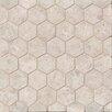 Bedrosians Hexagon Marble Mosaic Tile in Sebastian Gray