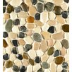 Bedrosians Hemisphere Random Sized Stone Pebble Tile in Malaga Bay