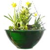 Flower Tower iBop Hydra Round Hanging Basket