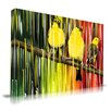 Maxwell Dickson 'Three Little Birds' Graphic Art on Wrapped Canvas
