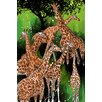 """Maxwell Dickson """"Group of Giraffe"""" Painting Prints on Canvas"""