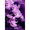 Maxwell Dickson 'Purple Orchid' Floral Flower Graphic Art on Wrapped Canvas