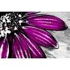 Maxwell Dickson Purple Petals Painting Prints on Canvas