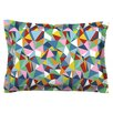 KESS InHouse Abstraction by Project M Featherweight Pillow Sham