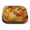 KESS InHouse Autumn Leaves by Angie Turner Coaster (Set of 4)