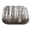 KESS InHouse Birchwood by Monika Strigel Gray Forest Coaster (Set of 4)