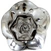 Charleston Knob Company Lucent Crystal Knob (Set of 4)