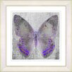 "Studio Works Modern ""Dusk Butterfly - Purple"" by Zhee Singer Framed Graphic Art in Purple"
