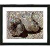 """Studio Works Modern """"Garlic - Beige"""" by Zhee Singer Framed Graphic Art in Beige"""